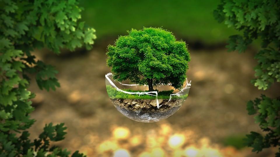 Environmental-Engineering-